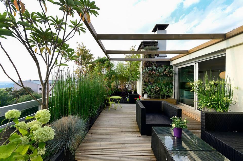 Planning A Rooftop Garden Milestone