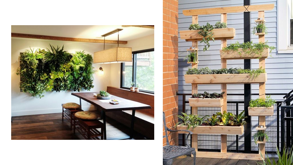 A stunning, eco-friendly garden is just what you need to take your home or office to the next level.