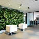 Green Walls – Design Ideas to Leave a Lasting Impression in Your Business or Villa